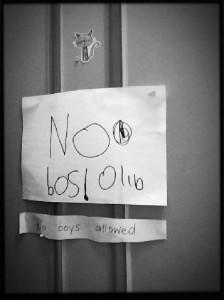 NoBosOlib