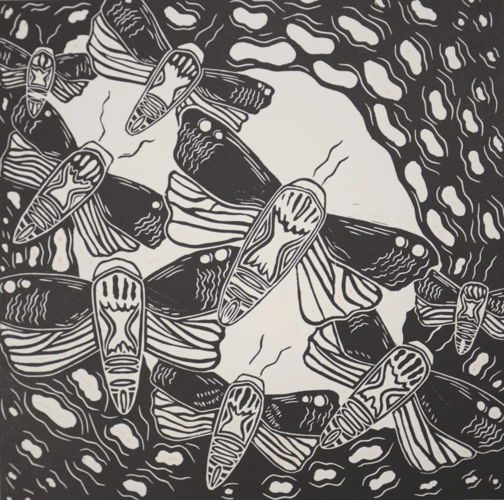 Figure: 5 Jessica Bulger Bogong Moths 2007 Relief Lino Print on Velin Arches 300gsm Image size 25 x 27cm, paper size 40 x 50cm Image courtesy of Cicada Press University of Wollongong collection (as part of a series of 5 Lino Prints)
